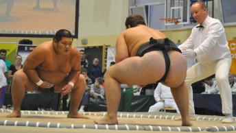sumo-slider