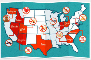 states-strangest-laws-new