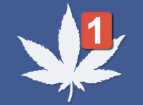 facebook cannabis