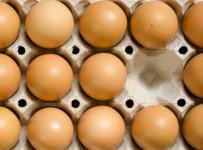 egg-boxFI