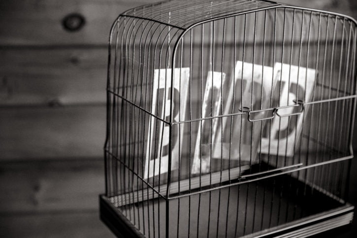 hq-bird-in-cage
