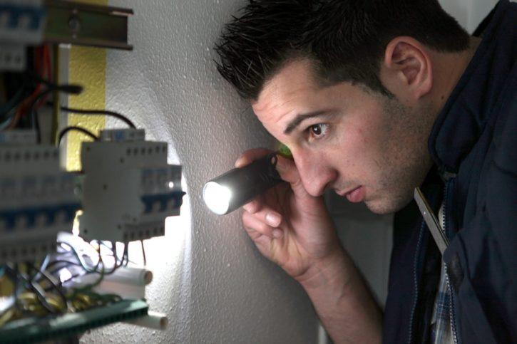 inspectors shining a light
