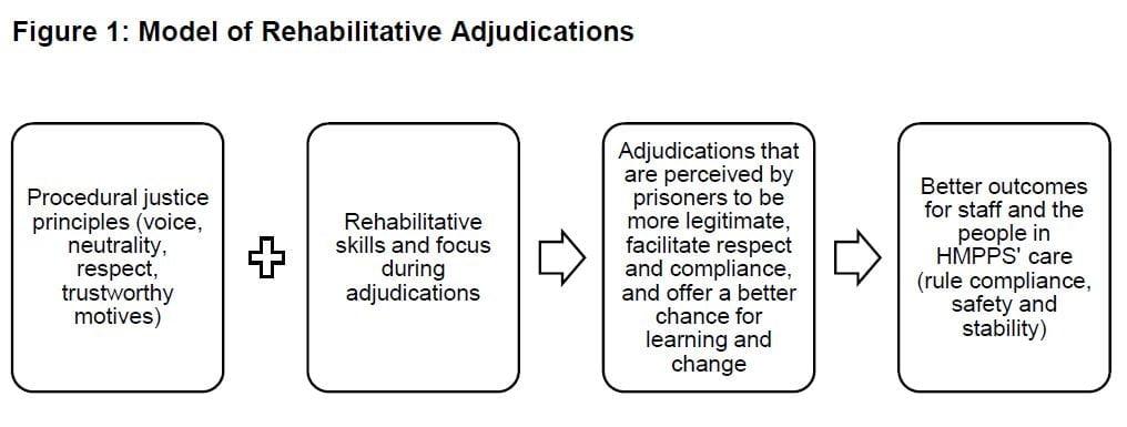 rehabilitative adjudications model