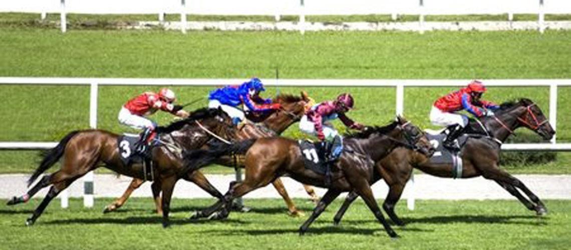 horse-raceFI