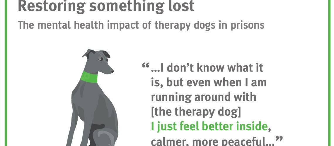 therapy dog fi